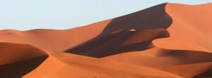 The Namib desert during your safari tour