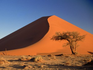 Sand dunes in Africa with Absolute Africa