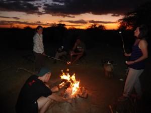 P1050706 Troy Serengeti